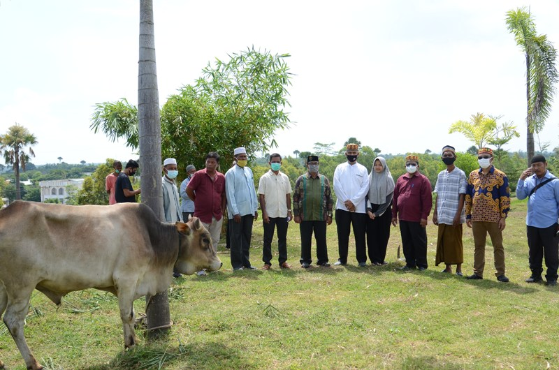 http://news.unimal.ac.id/index/single/1455/unimal-bagikan-12-ekor-hewan-kurban-untuk-gampong-lingkar-kampus